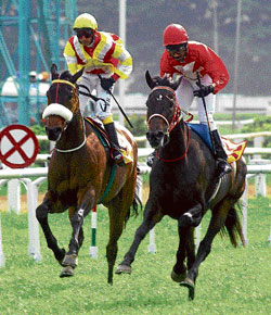 Appu-ridden Gypsy Magic (right) beats Fleet  Indian (Jagadeesh up) to clinch the Bangalore Summer Million on Sunday. DH PHOTO