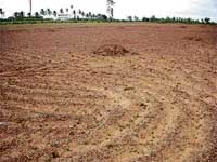 A land prepared for sowing  in Shidlaghatta taluk. Agricultural activities have come to a grinding halt in the taluk owing to scanty rains. DH Photo