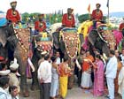 pRESERVING TRADITION: RDPR and district in-charge Minister Shobha Karandlaje performing aarti as part of traditional welcome to the first batch of Dasara elephants on Palace premises in Mysore on Saturday. DH PHOTO