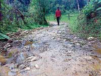 The pathetic condition of road to Iligudde tribal colony near Karagadde in Kalasa. Dh Photo