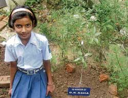 Asha, a  student of Kendriya Vidyalaya seen with her sapling in the garden of her house. DH PHOTO