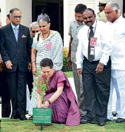 AICC President Sonia Gandhi planting a sapling at Global Education Center-II in Mysore on Tuesday. Infosys mentor Narayana Murthy (left), CEO Kris Gopalkrishnan, Infosys Foundation Chairperson Sudha Murty and Chief Minister B S Yeddyurappa look on. DH Photo