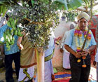 Tradition: Assistant Commissioner R S Peddappaiah offering pooja to the Banni tree in Kolar, on Monday. DH PHOTO