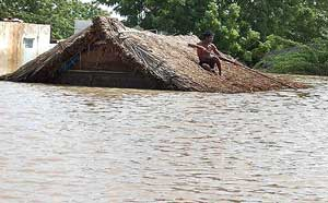 A man sits atop his house in a flood affected village in Mehboobnagar district of Andhra Pradesh on Monday. PTI