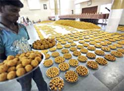 Laddoos weighing 15,000 kg, prepared for Diwali festival by Poona Merchants' Chamber, on display in Pune on Saturday. PTI