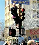 A UC Berkeley student climbs on a street light during a march against funding cuts and tuition hikes. AFP