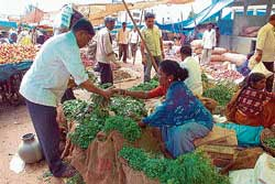 CMC member Hemavathi selling vegetables in Chikmagalur market. dh photo