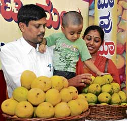 An excited child picking up a fruit at 'Mango Mela-2010' organised by HOPCOMS at Hudson Circle on Friday. DH photo
