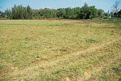 Awaiting nod:  The three acre land handed over by the Agriculture University for the construction of the proposed private bus stand in Madikeri. DH PHOTO