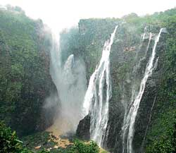A DH file photo of Jog Falls.