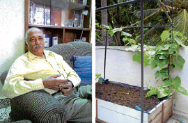 B N Vishwanath, a consultant in organic terrace farming and his garden