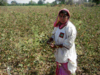 The cotton-picking coat is more cost-effective and comfortable, says Rukmini. PIC/WFS