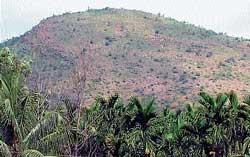 A partial view of Rangappanagudda near Kalasapura in Chikmagalur, where Uranium deposit has been reportedly found. DH PHOTO