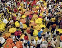 Brisk business: People busy buying flowers for Ayudha pooja at a market in the City on Friday. DH PHOTO