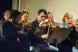 Involved: The orchestra playing during the concert.