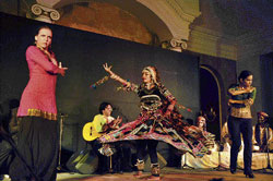 Mesmerising: The Flamenco and Rajasthani dancers performing together.