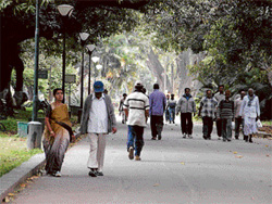 Repeated complaints by walkers about lack of maintenance in Lalbagh have fallen on deaf ears. File Photo