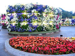 Full bloom: The Taipei International Flora Exposition in Taiwan. photo by Authors