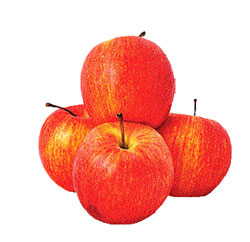 four apples a day can cut cholesterol levels deccan herald