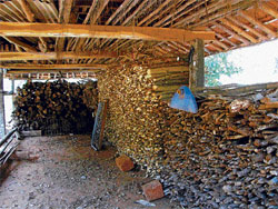 For a rainy day: Firewood is stored ahead of the rainy season in the Malnad region.