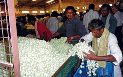 A file photo of silk cocoon market.