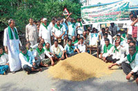 Farmers stage a protest over crash of paddy price by pouring it on the road in Gajanur, on Saturday. DH Photo