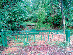A view of the gate that prevents vehicular movement in Shedimane reserve forest road near Siddapura.
