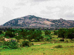 The hill near Kurudumale, in Mulbagal taluk, which is the place of birth of River Koundinya. DH photo