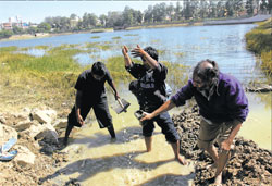 Damage control: Members of the Hasiru Usiru work to fill a rupture on the Yediyur Lake embankment. DH photo