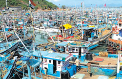 anchored: Hundreds of deep sea fishing boats anchored at the Karwar port on Monday. The boats could not venture into the sea due to rough weather. DH Photo