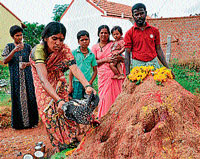 Women offer chicken's blood to the anthill as part of Shashti in Chamarajanagar district on Wednesday. dh photo