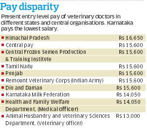 Vet population dries up in State | Deccan Herald
