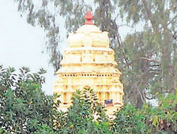 The Kempegowda tower stands partly obscured by trees. DH photo