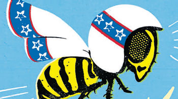 OUTLIERS Thrill-seeking bees have                 genetic brain patterns that set them apart from timid bees. (Chris Gash via NYT)