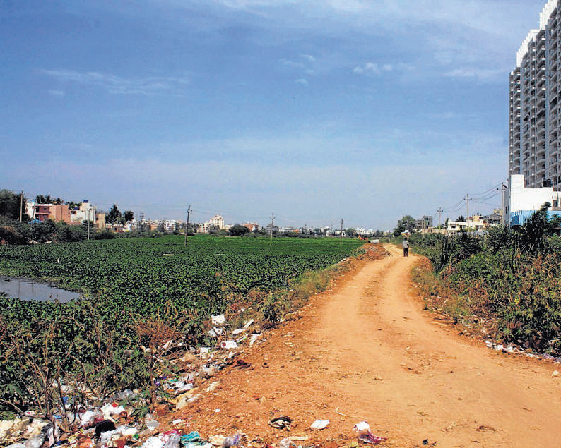 Officials, land sharks join hands to encroach lake