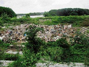 Uncleared Ganesha idols chokeHebbal lake