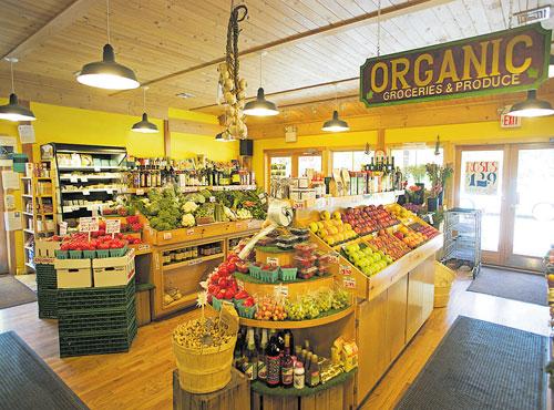 India set to go on organic diet