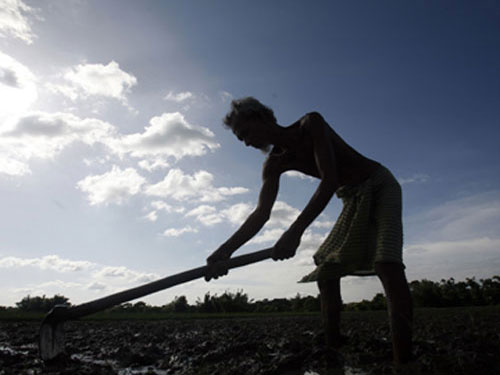 Govt gives Rs 36Kcr to farm sector; agri-credit at Rs 9lk cr