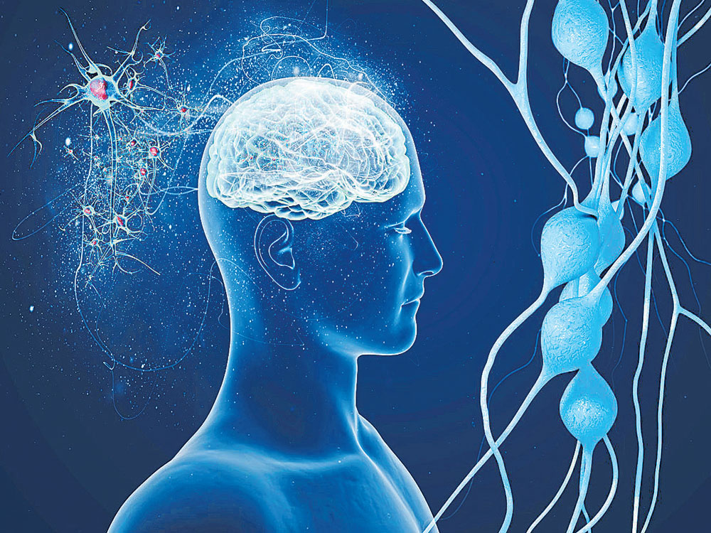 Training may give you super-sized memory in 40 days: study