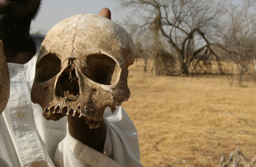 Prehistoric evidence of human cannibalism discovered