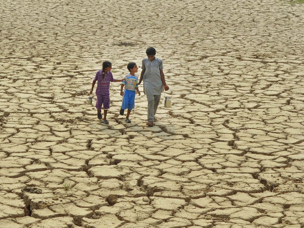 Extreme summers driven by human-caused global warming: study