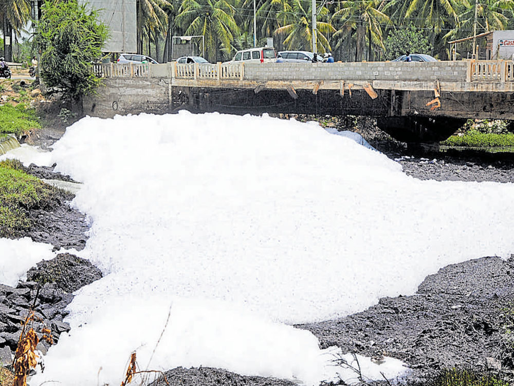 'Detergent phosphates cause for frothing at lakes'