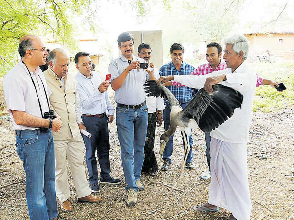 WWF chips in to preserve Kokkarebellur community reserve