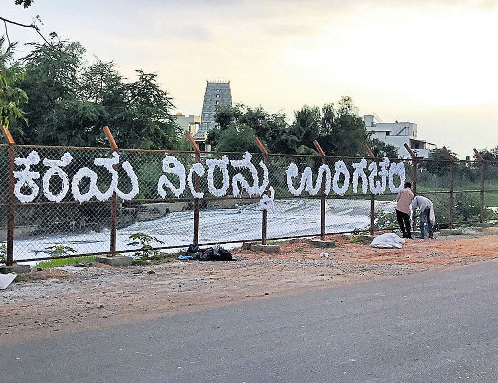 Now, an artwork at frothing Bellandur lake gives the message