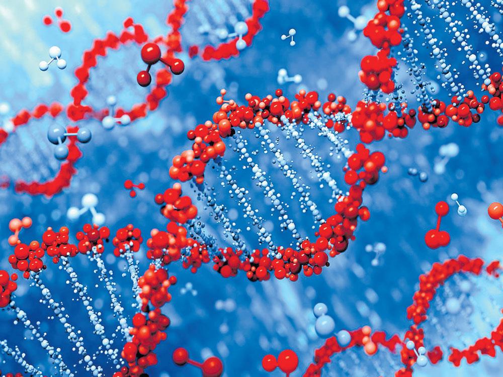 Night shifts may hamper DNA repair: study