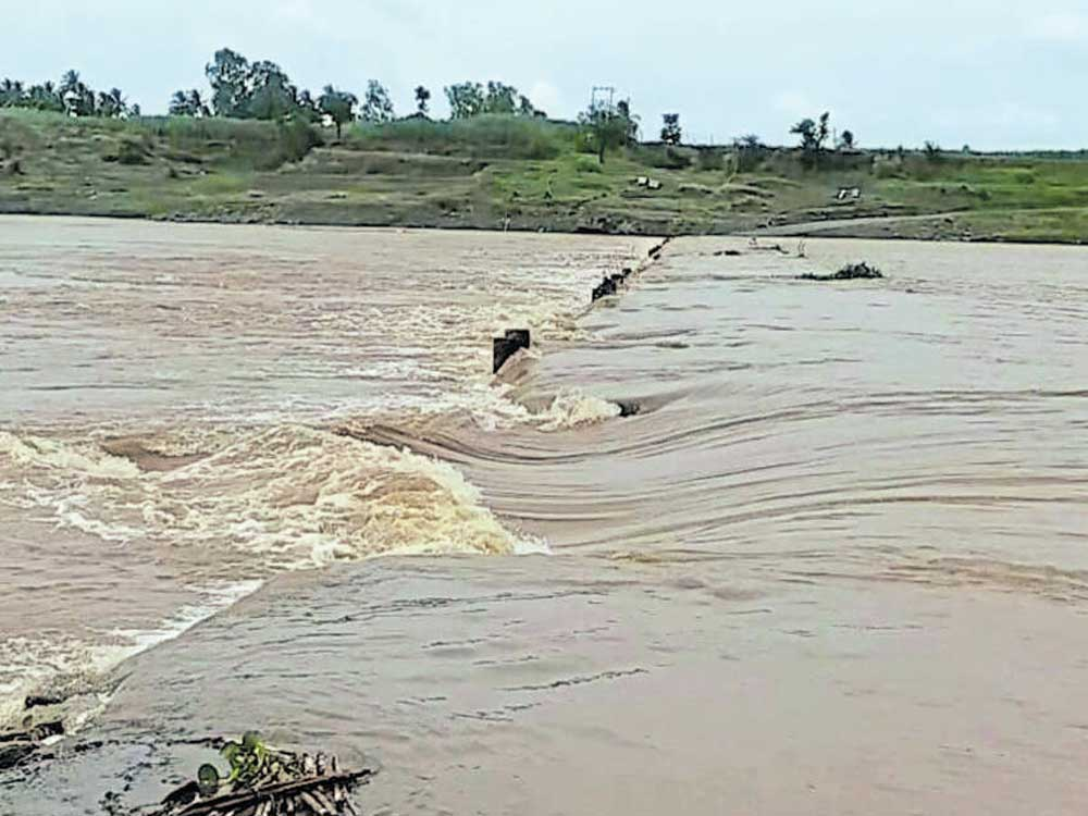 Heavy rain: water level in major dams goes up