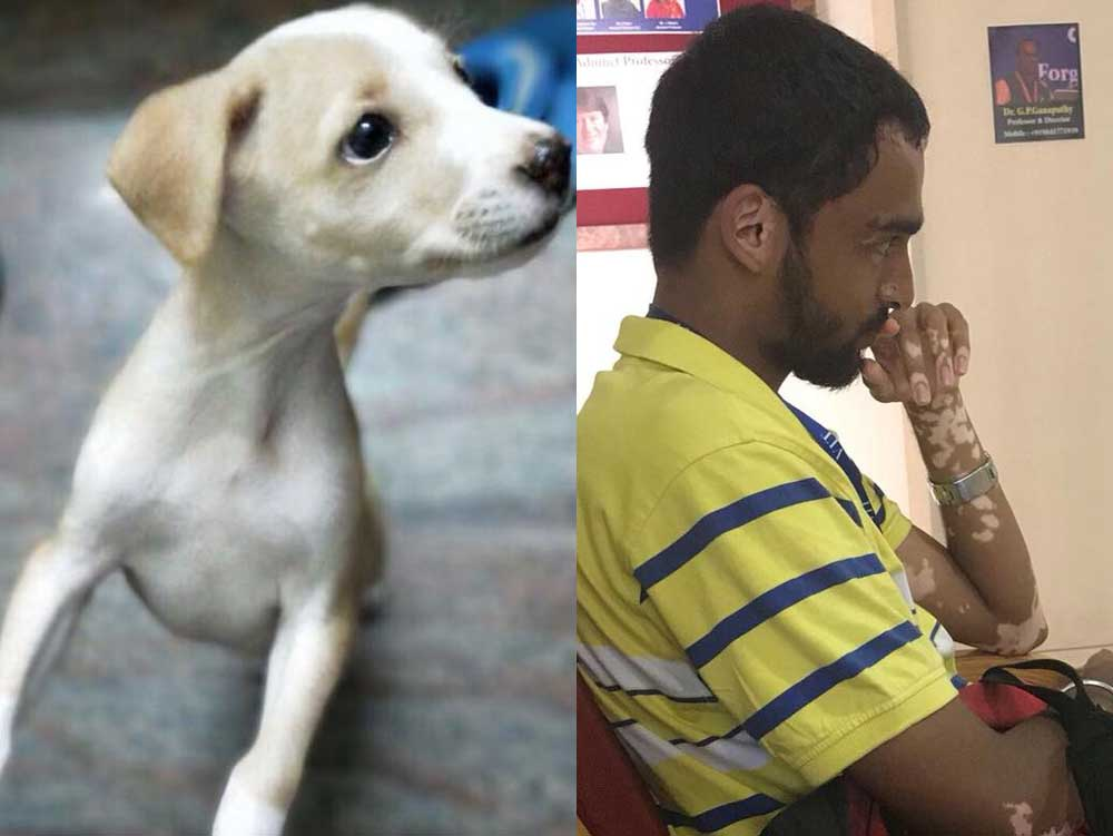 TN student kills 2 puppies by throwing them off terrace