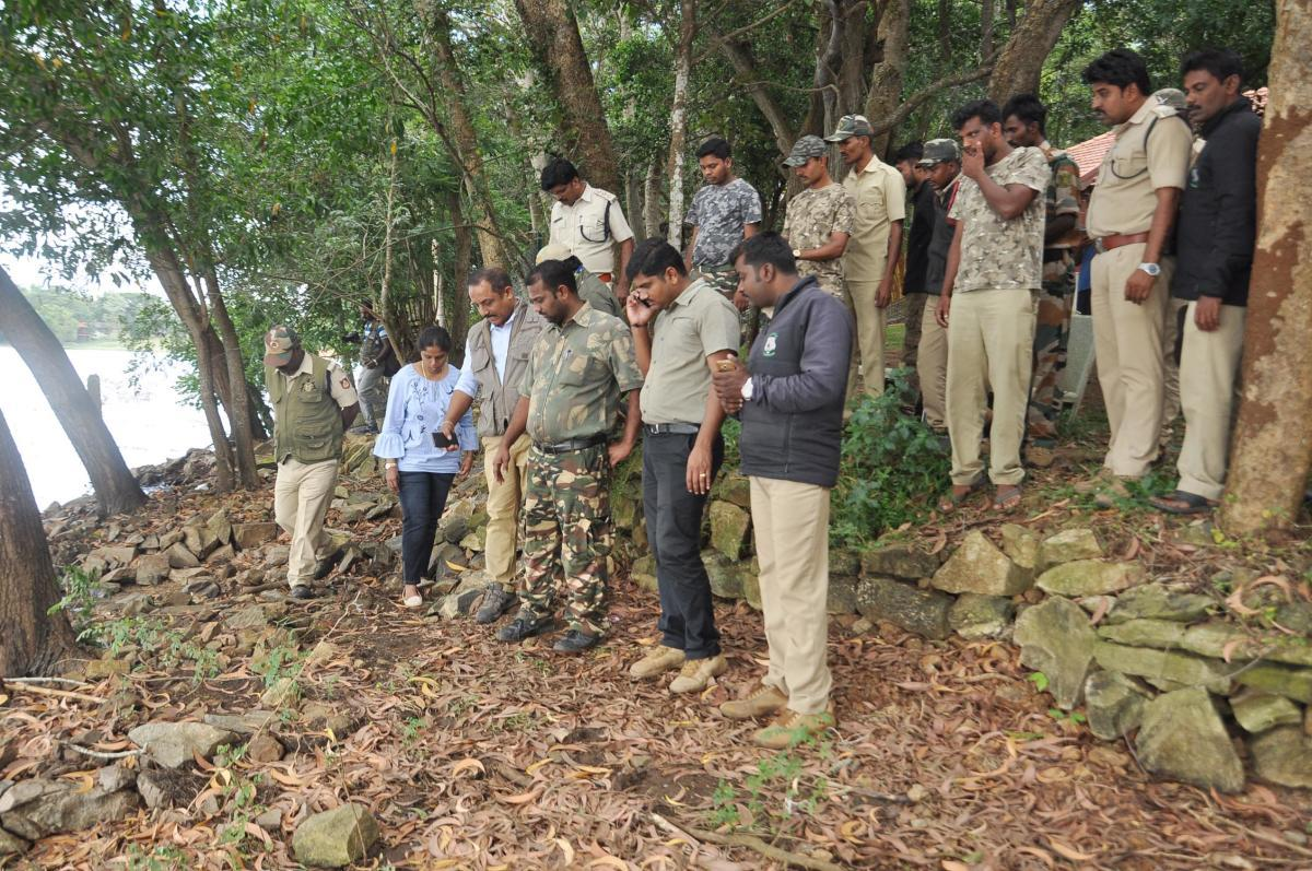 'Operation Tiger' launched today to capture big cat spotted near Kabini lodge