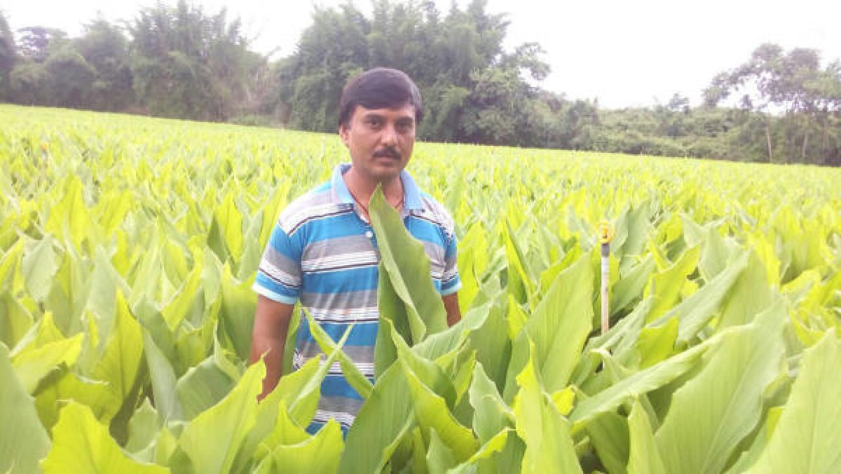 Diversity is key to farming success
