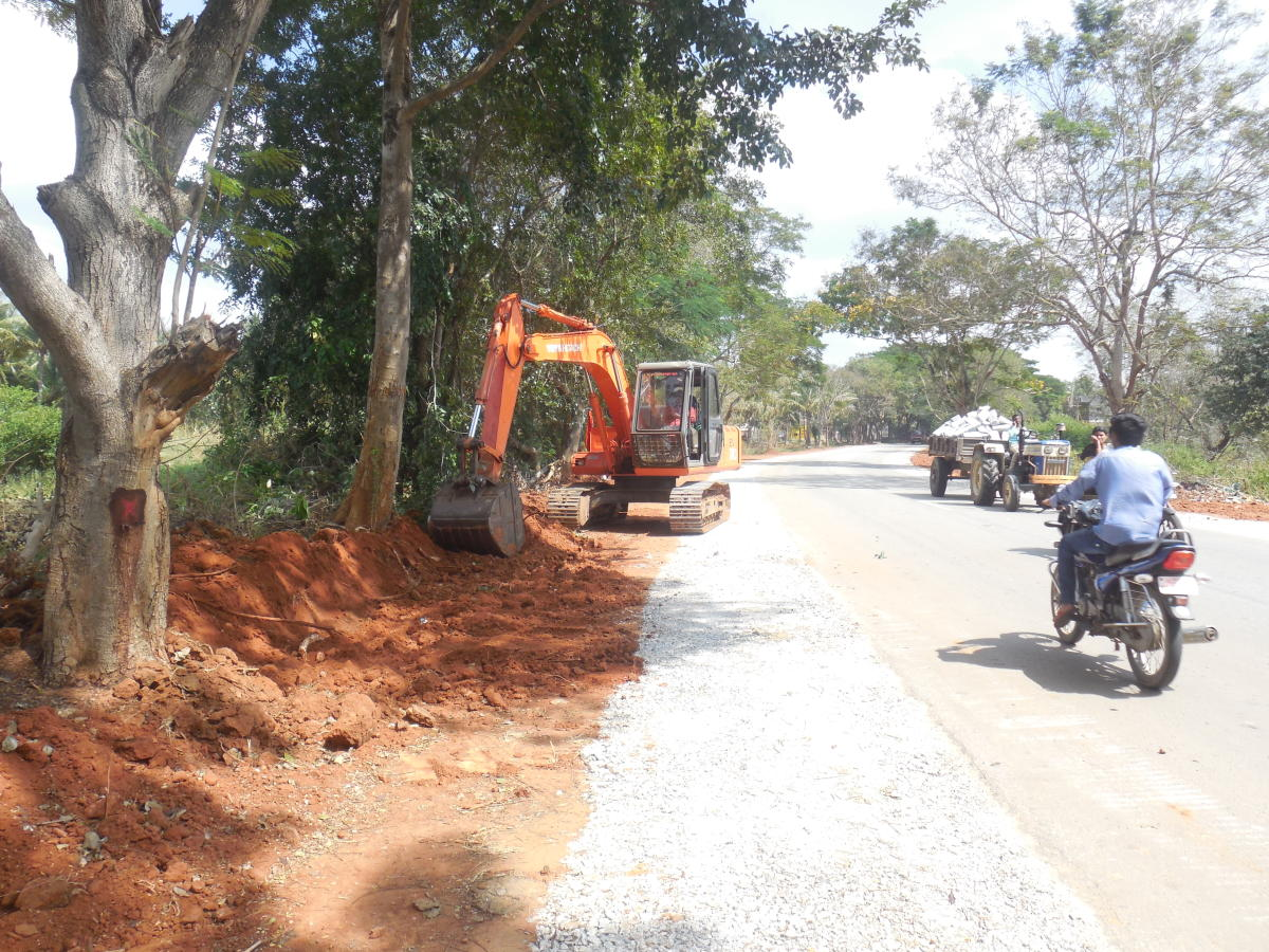 Delay in tree felling affects Mahamastakabhisheka works